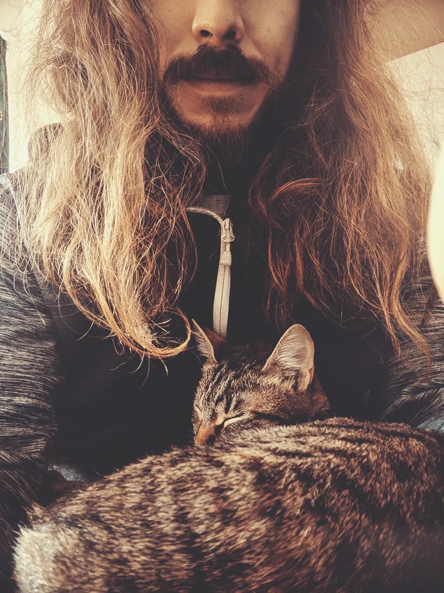 WARDYWORKS_Brasov_Cat02.jpg