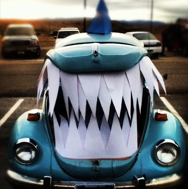 Shark -