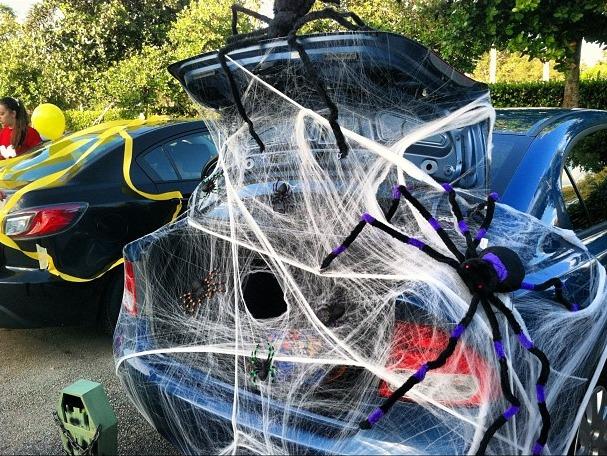 Spider Web -