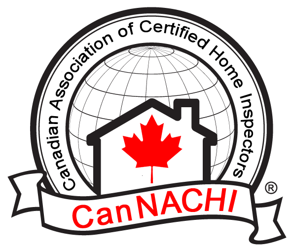Canachi