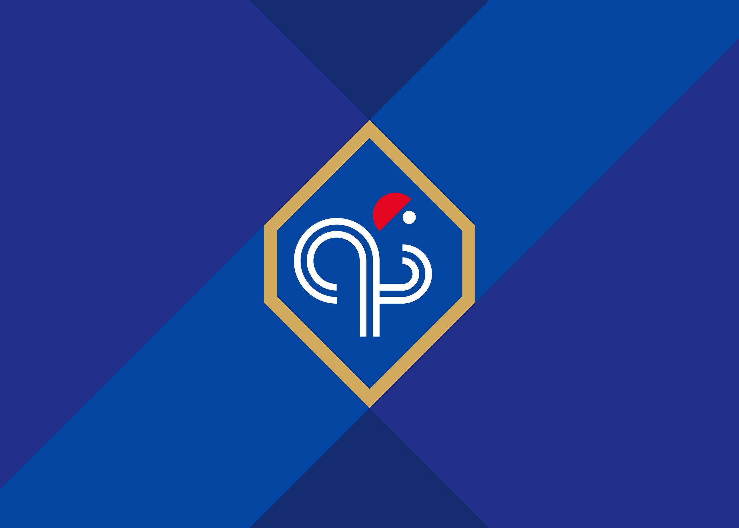 France-Geometric-World-Cup-Football-Badge-01-Logo-Design-Freelance-Kent.png