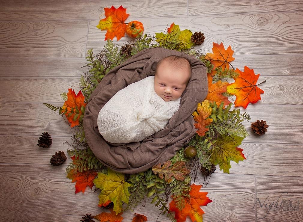 St. Joseph Michigan Newborn, Child and family Photographer_0314.jpg