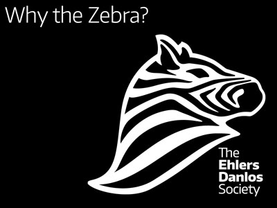 why-the-zebra-400.jpg