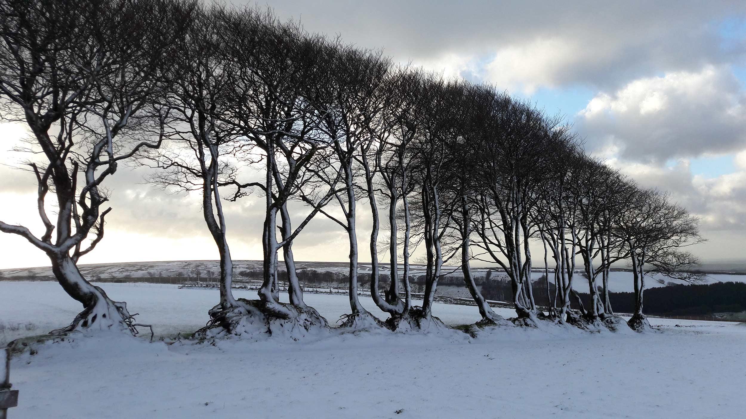 exmoor-landscape-02.jpg