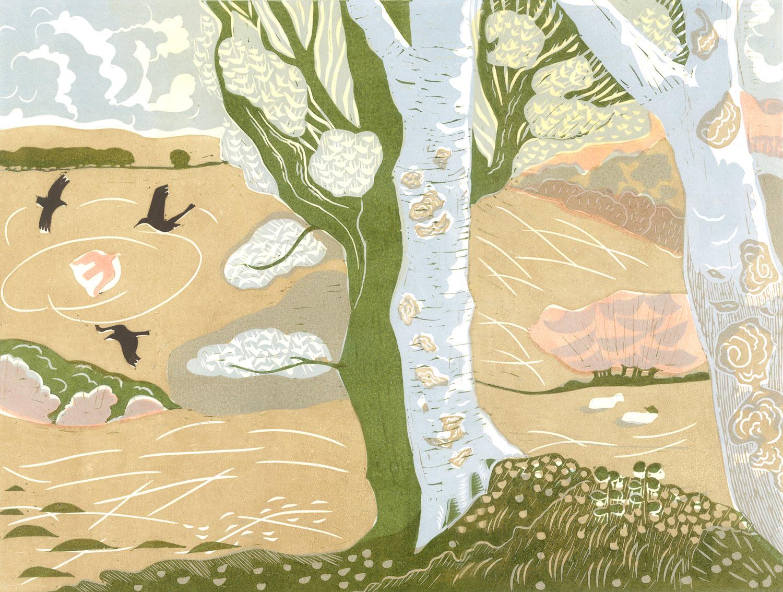 silver-birch-tree.jpg