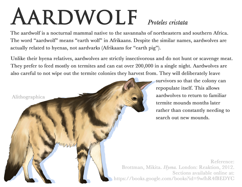 Alithographica Art  -  Science Fact Friday  -  March 17, 2017  ·     Science Fact Friday: Aardwolves!    Tested out Corel Painter on this one. Not sure how I feel about it yet. Brush option overload.