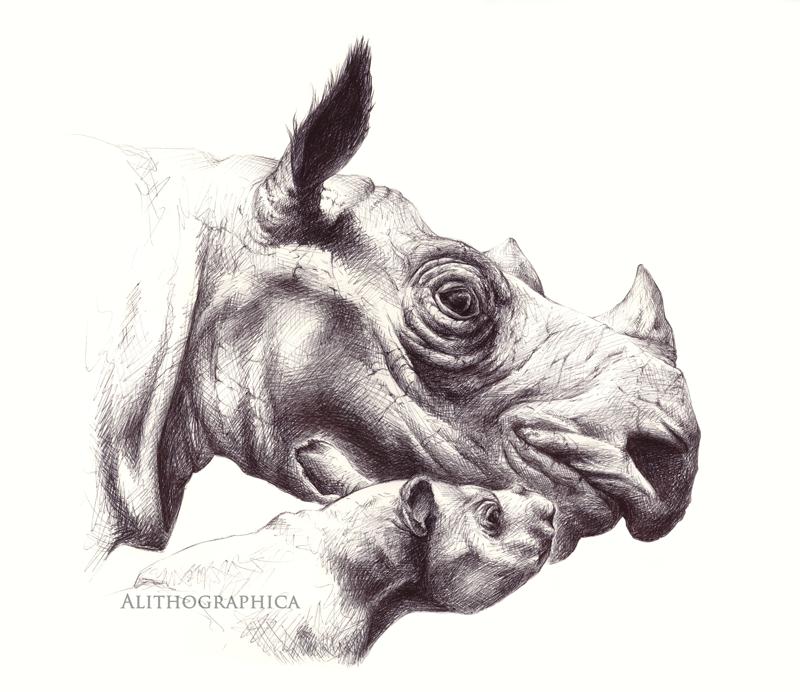Jenn-rhino-signed.png
