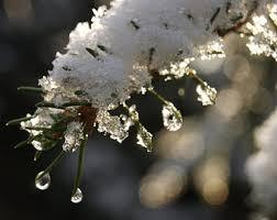 winter's thaw.jpg