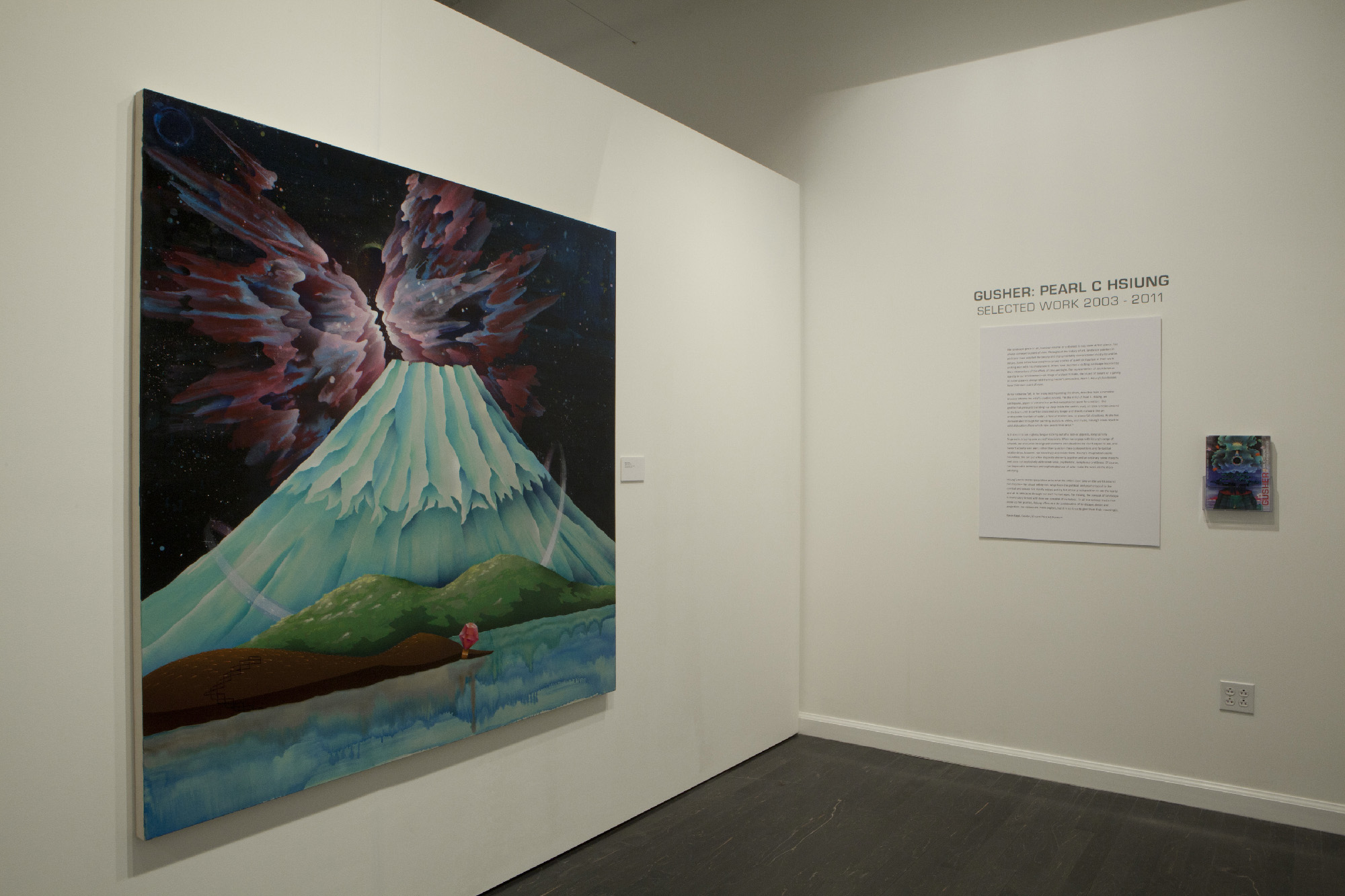 Installation images from Gusher;Pearl C. Hsiung Selected Works 2003 - 2011