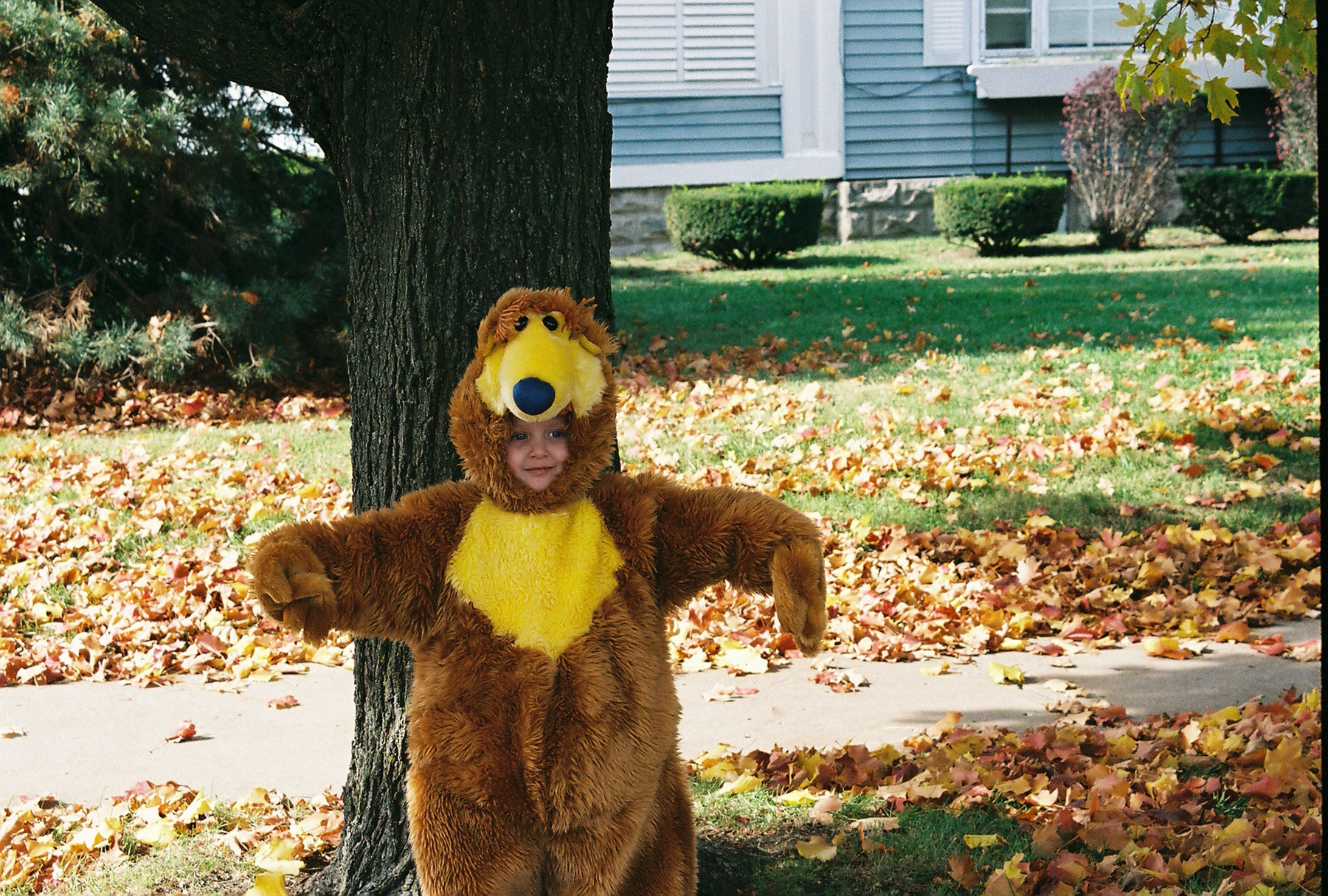 A cute bear at Halloween. I don't remember where we got this costume, but it is by far one of my favorites!