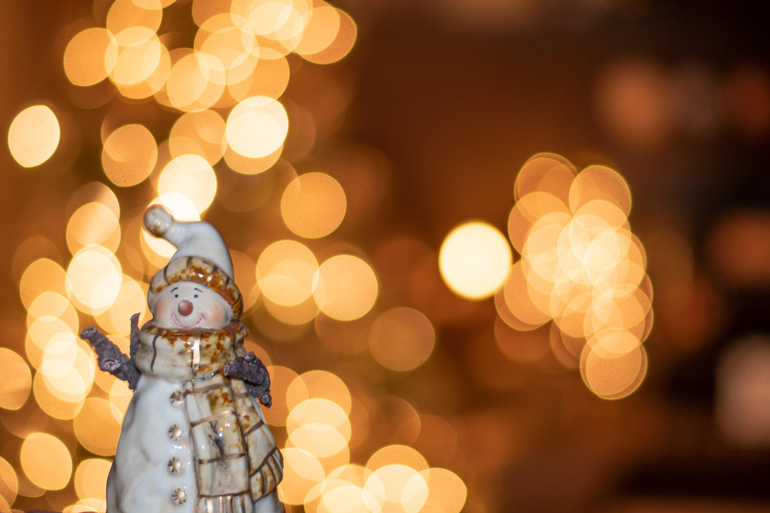Christmas Ornaments (3 of 10).jpg