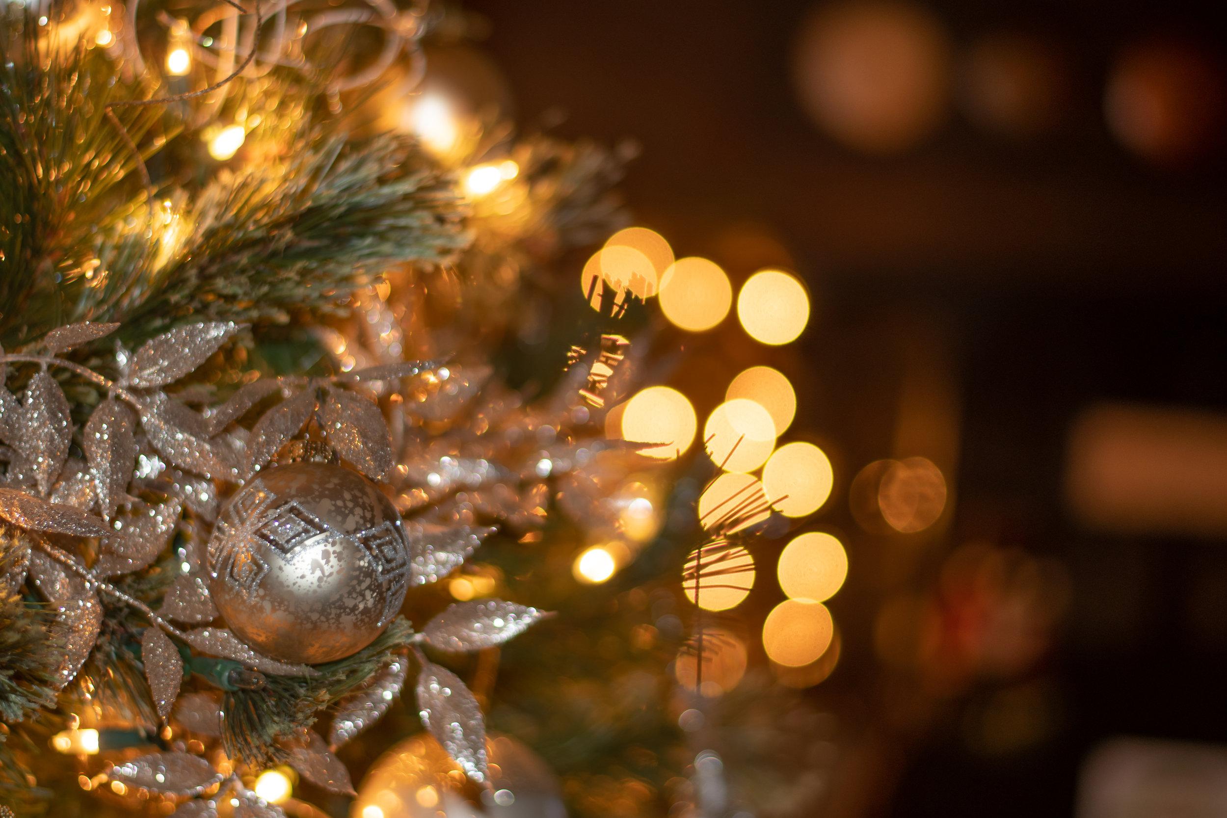 Christmas Ornaments (1 of 10).jpg