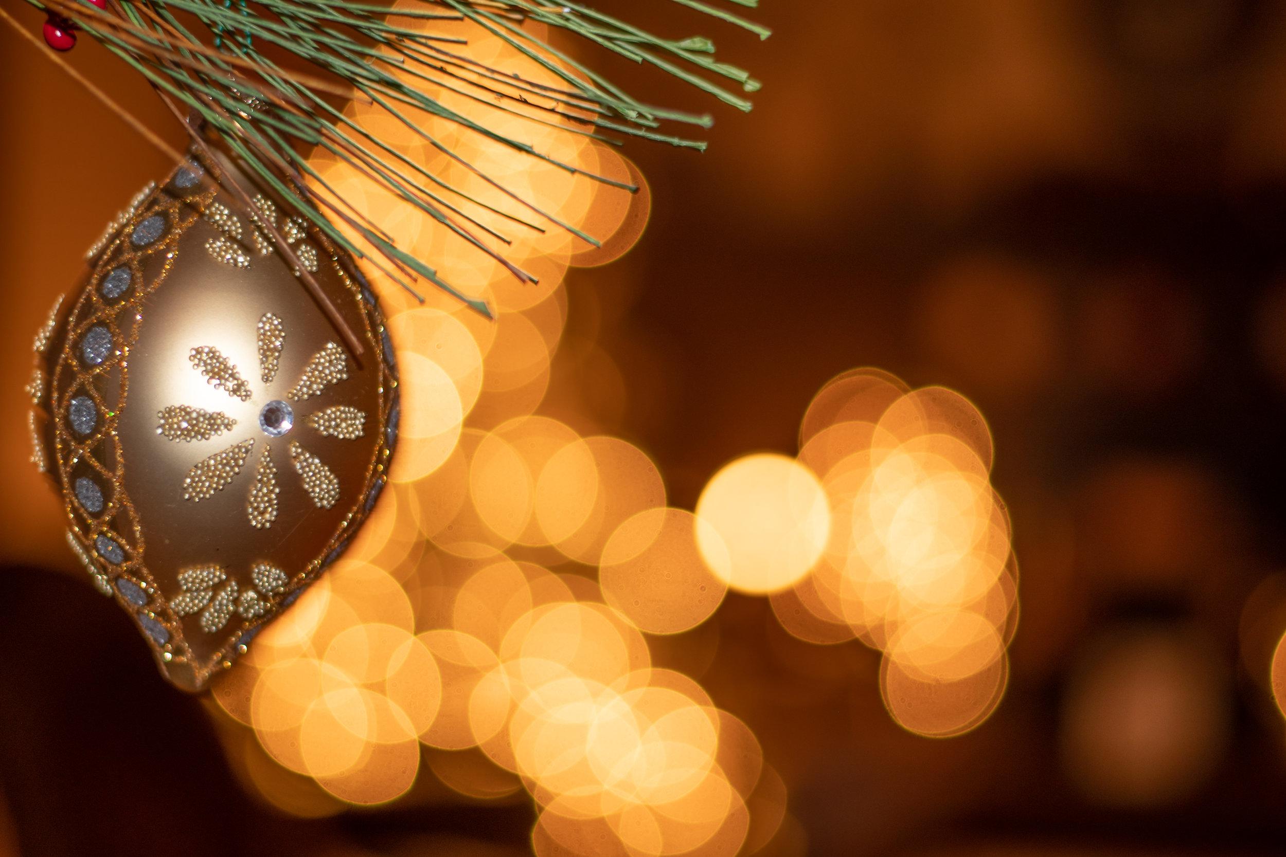 Christmas Ornaments (7 of 10).jpg