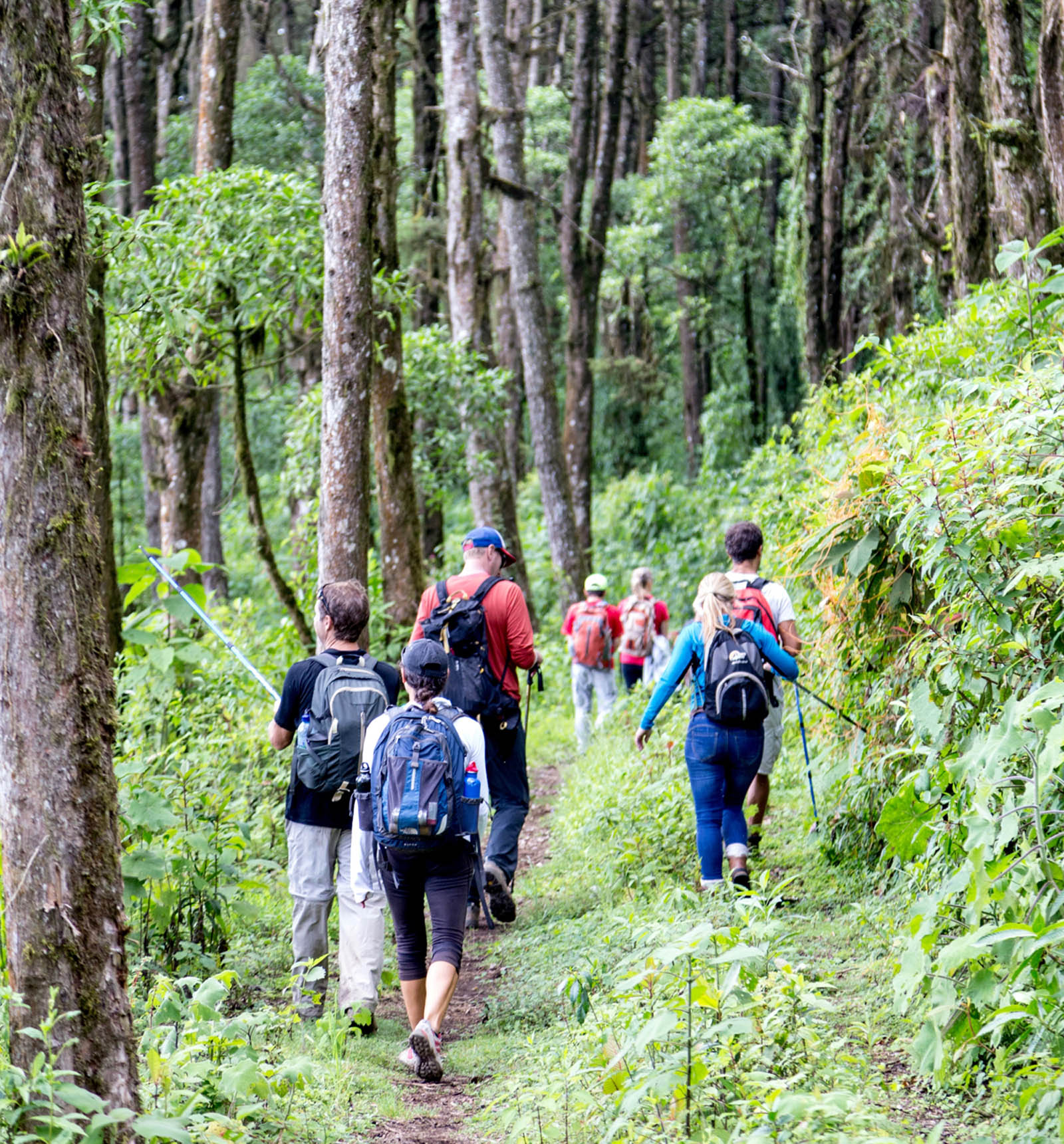Mayan Community Glamping Trek - Highlands Trek1.jpg