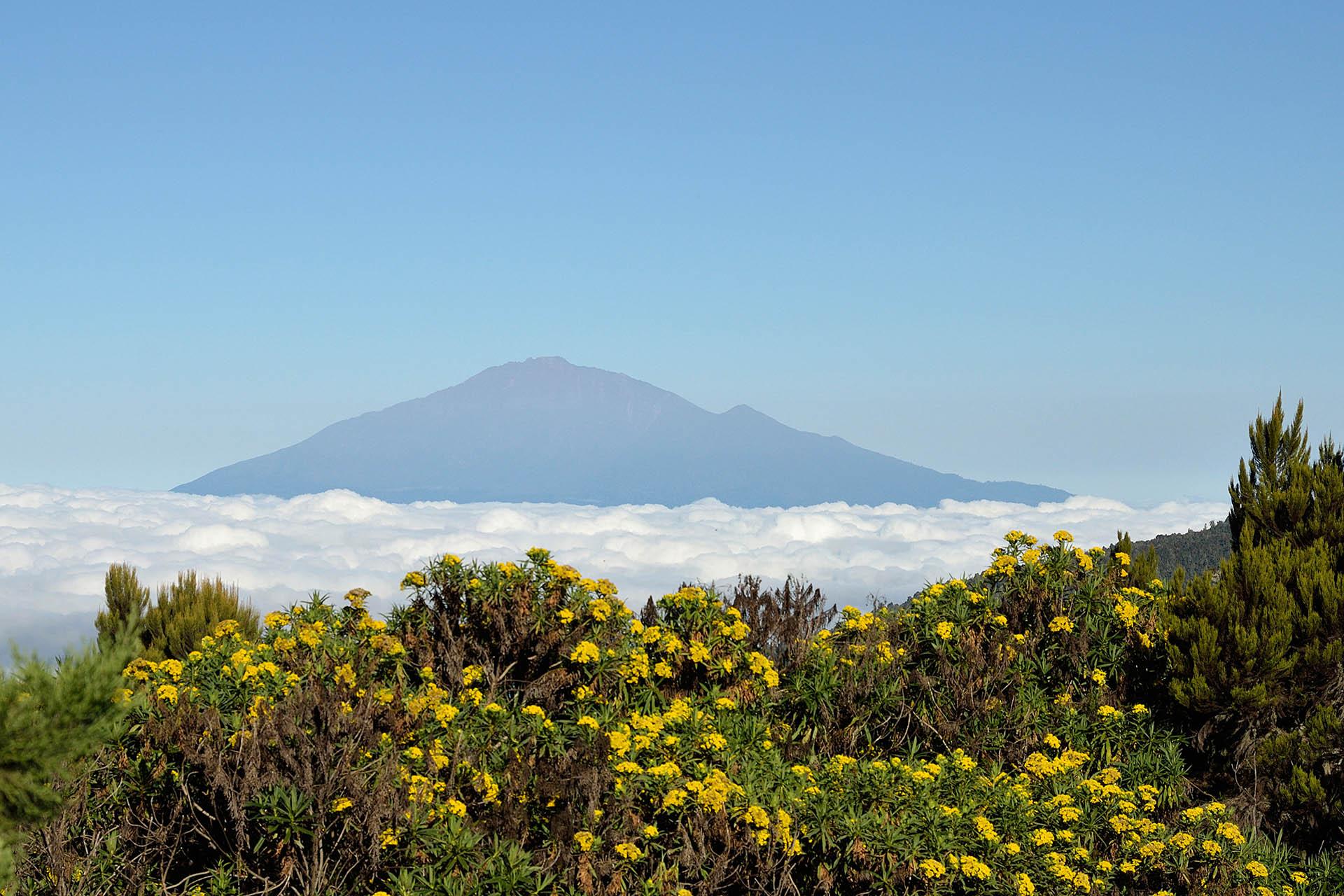 machame-scheduled-departure-mt-kilimanjaro-trekking-itineraries-maasai-wanderings-tanzania-africa.jpg
