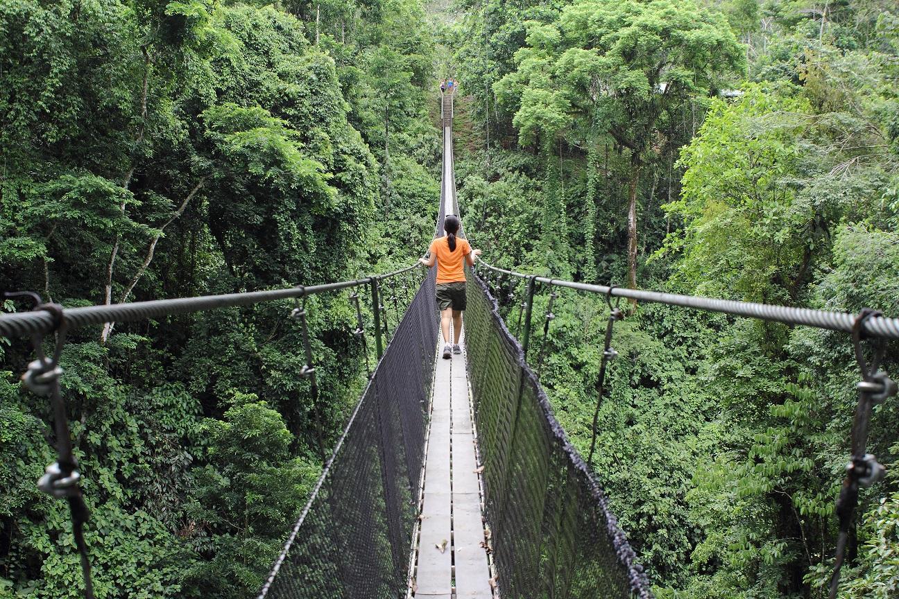 Costa-Rica-Hanging-Bridge-Campesinos-Reserve-Walking-Kusini-Collection.jpg