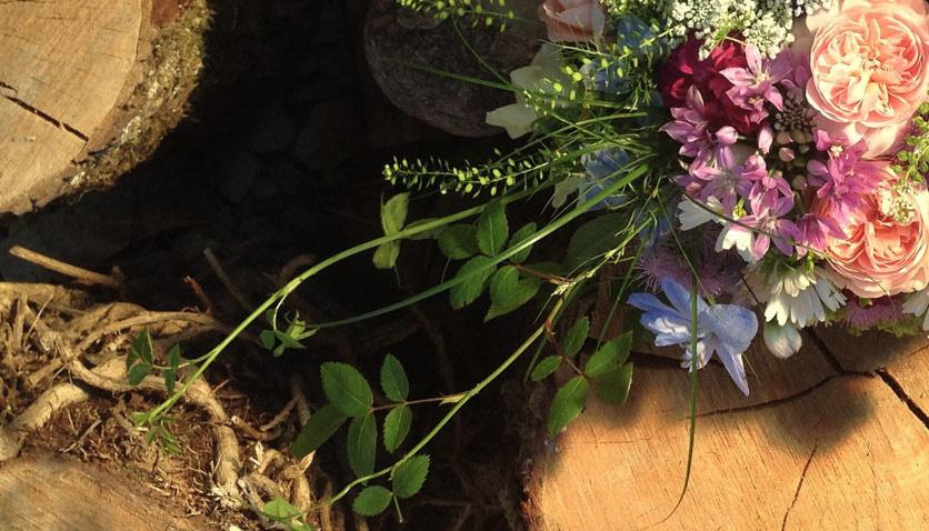 the woodland farm eco flowers 1.jpg
