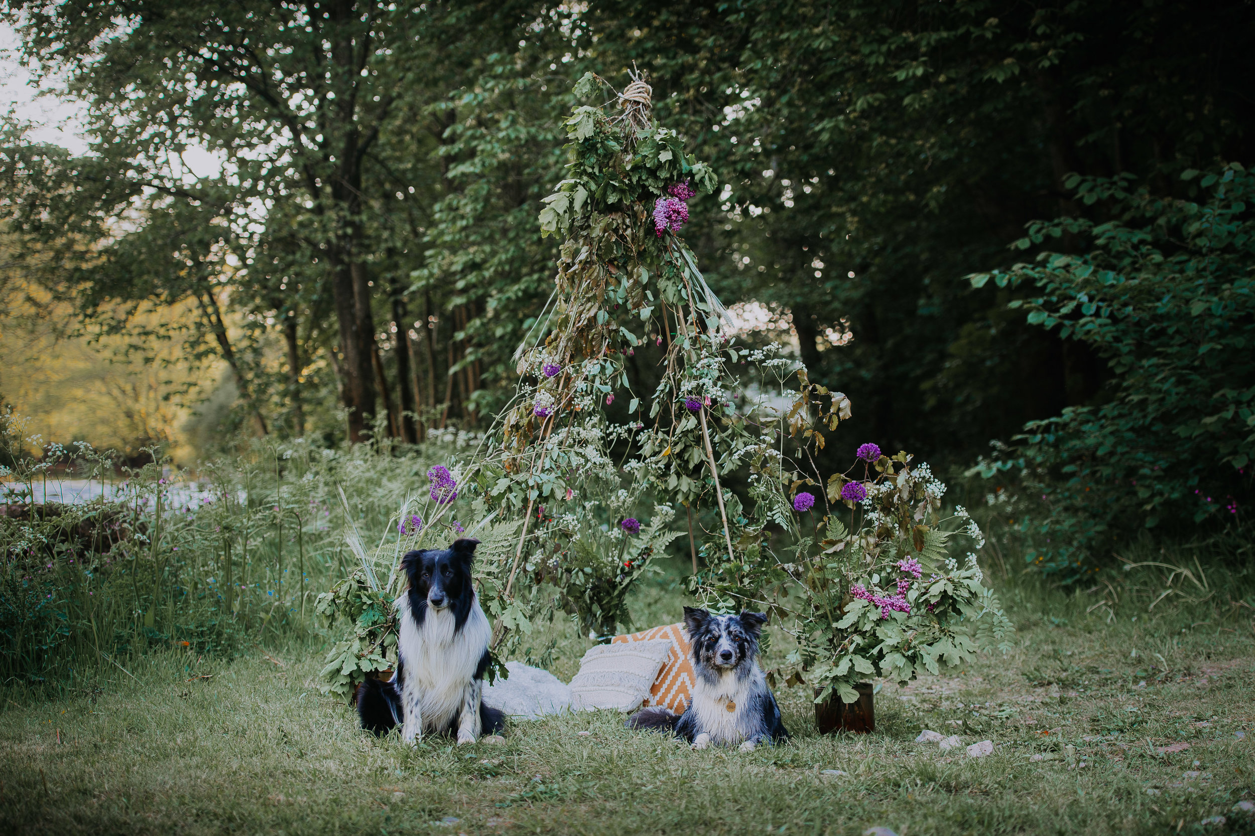 Outdoor tipi styled for a boho eco friendly wedding with cute doggies!