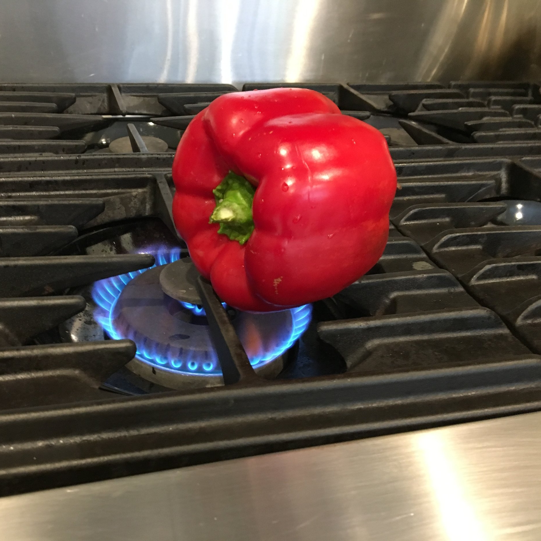 Stove: Place the pepper right on the flame. If it will rest on its own without falling over, leave it there. If it topples, you can hold it with tongs. You don't need to do anything to your pepper first, except wash it.  Oven & Grill: If you are roasting in the oven or on a grill, preheat to 400 degrees. I recommend giving your pepper a light coating of oil and sprinkle of salt. If you are roasting a solid item, like an eggplant or squash, poke some holes in it first. For hollow items like peppers, no poking is needed.
