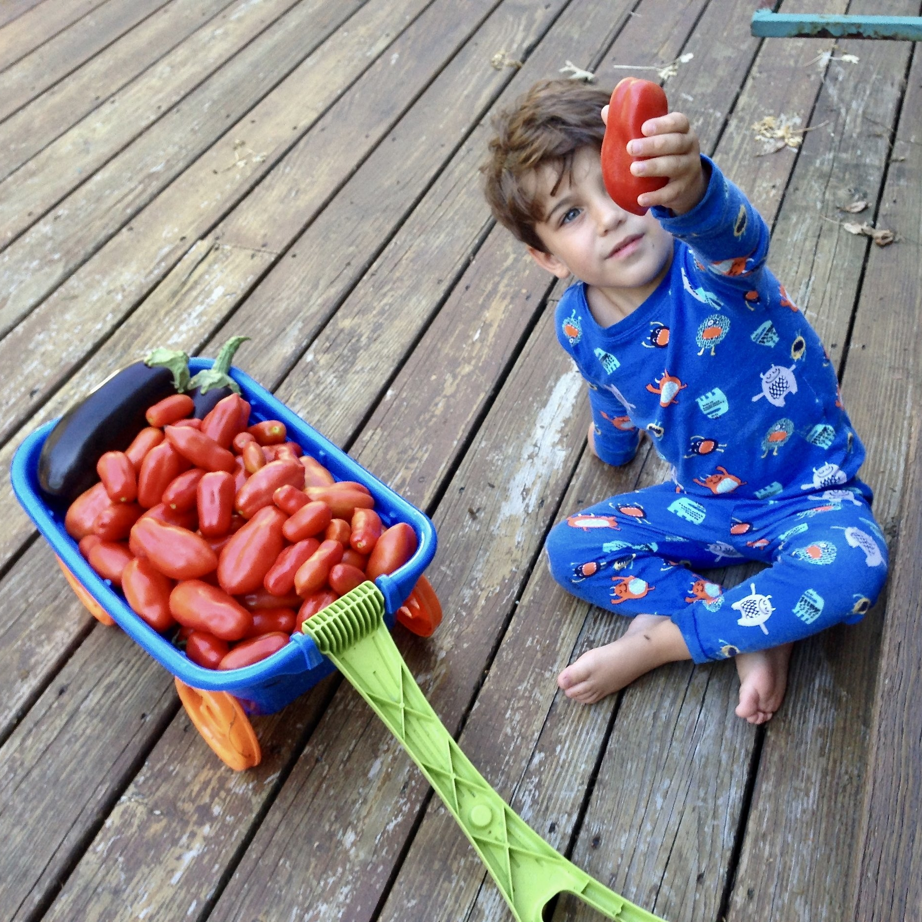 Plant and Pick Produce - Technically, this might not happen IN your kitchen, unless you are lucky enough to have some indoor plants or adjacent sun room. But planting is definitely a way to get kids involved in what you are cooking and helping you harvest what's needed for tonight's dinner -- from a bunch of herbs to a tomato or cucumber -- is a great task for little hands and energetic legs.