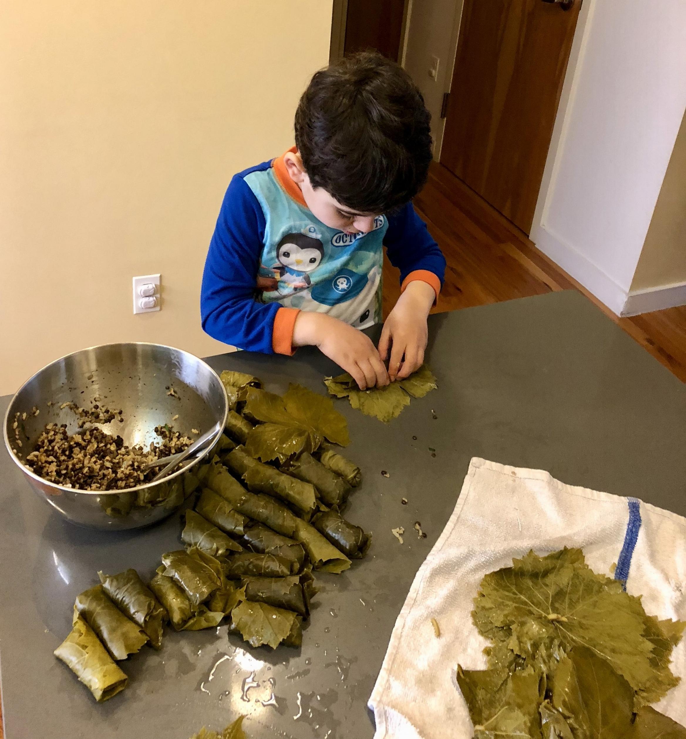 Dolmas: Vegetarian Stuffed Grape Leaves
