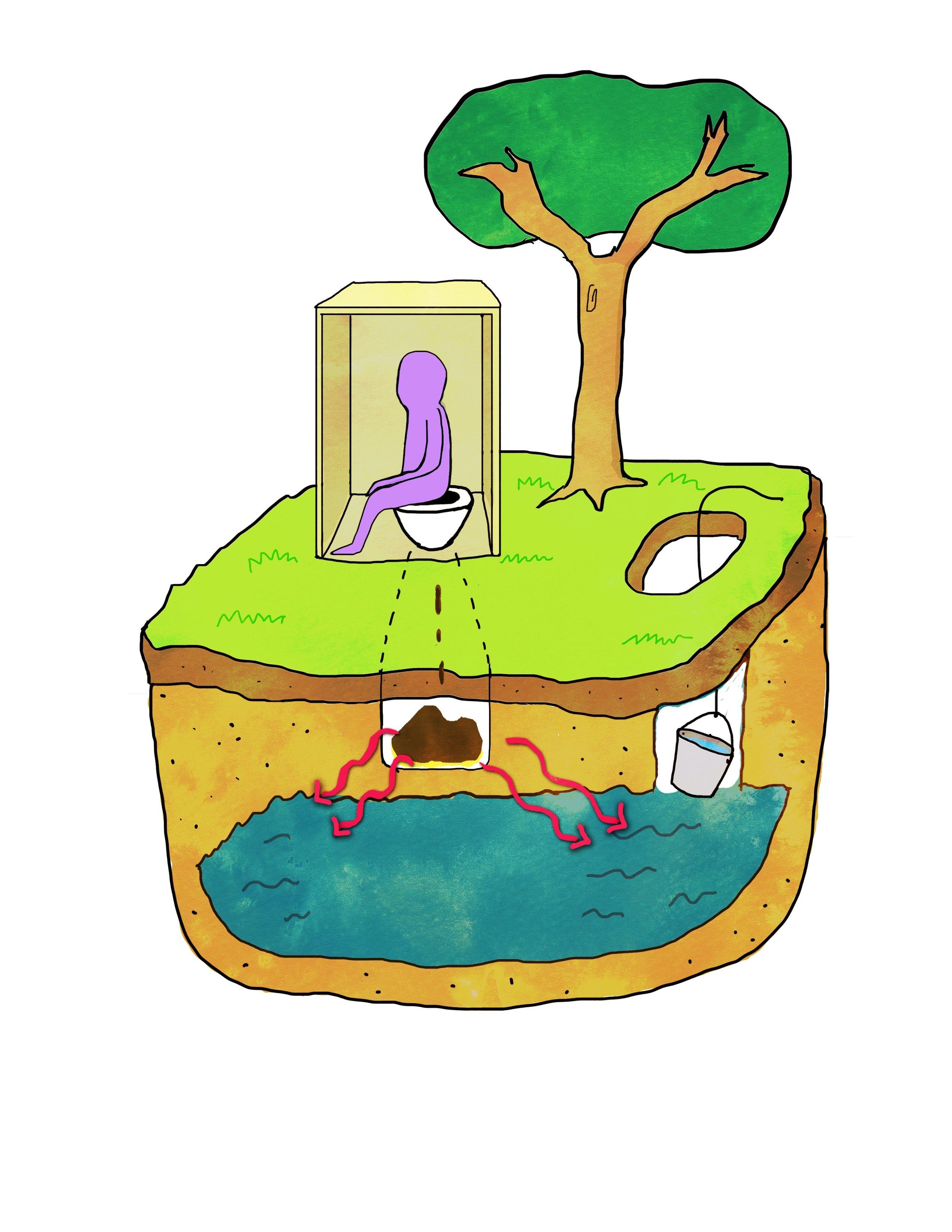 Feces contaminating gound water