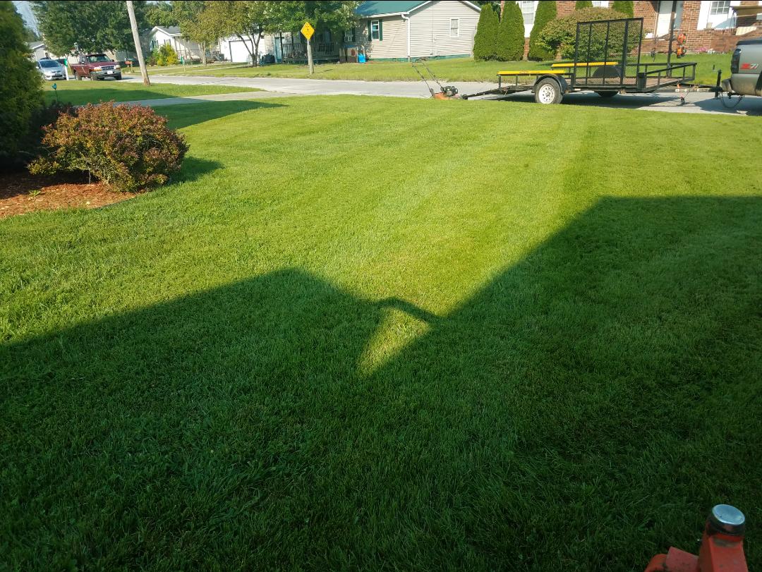 Side+Yard+Mowing.png