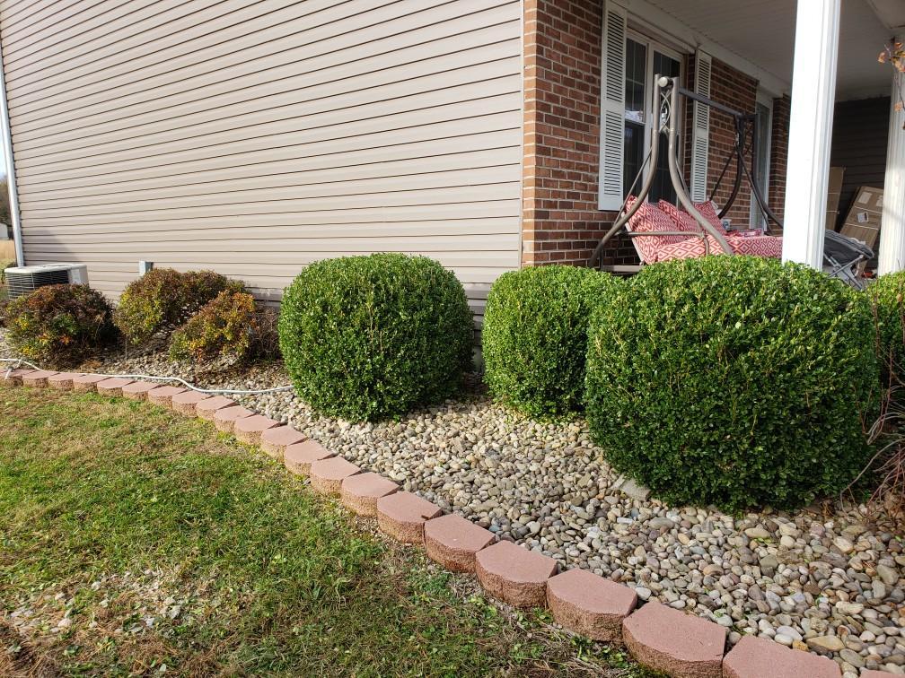 Hedge 3 (after).jpg