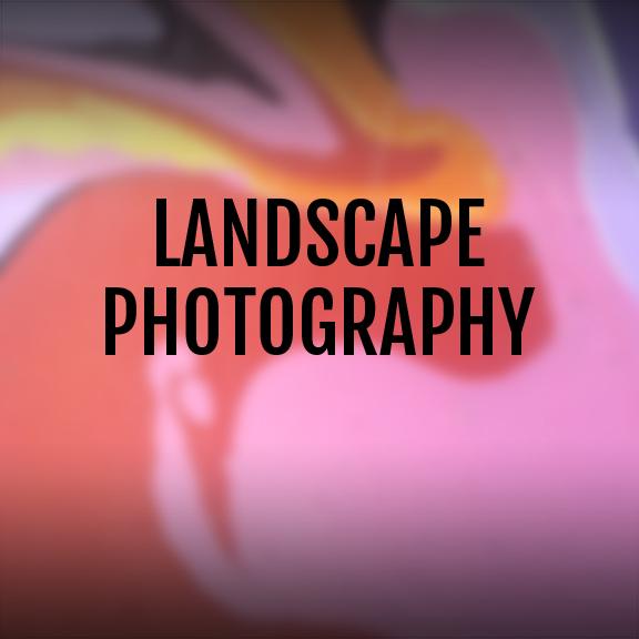 LANDSCAPE PHOTO.jpg