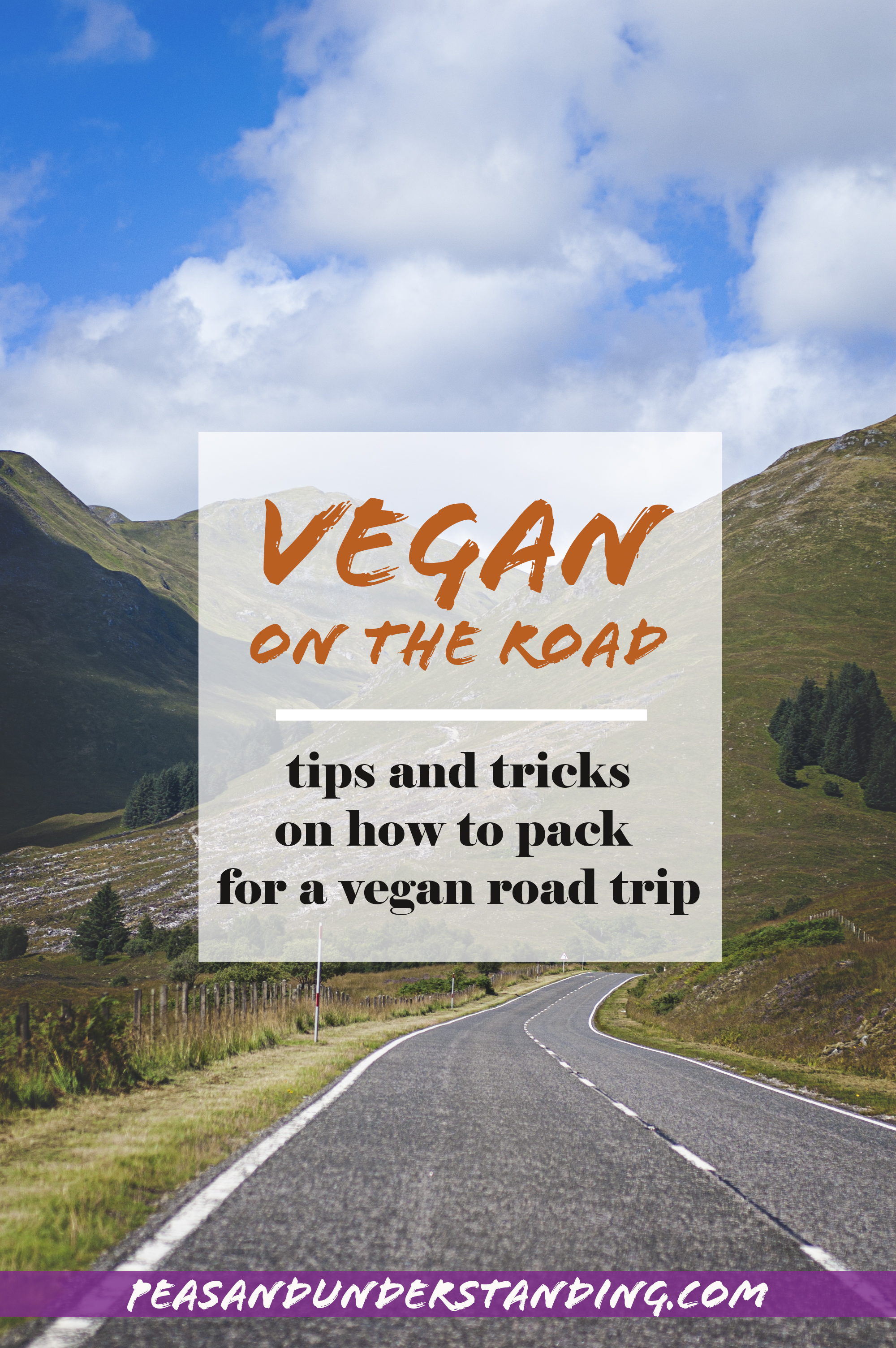 vegan road trip how to pack.jpg