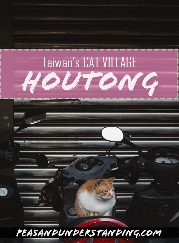 houtong cat village 1.jpg