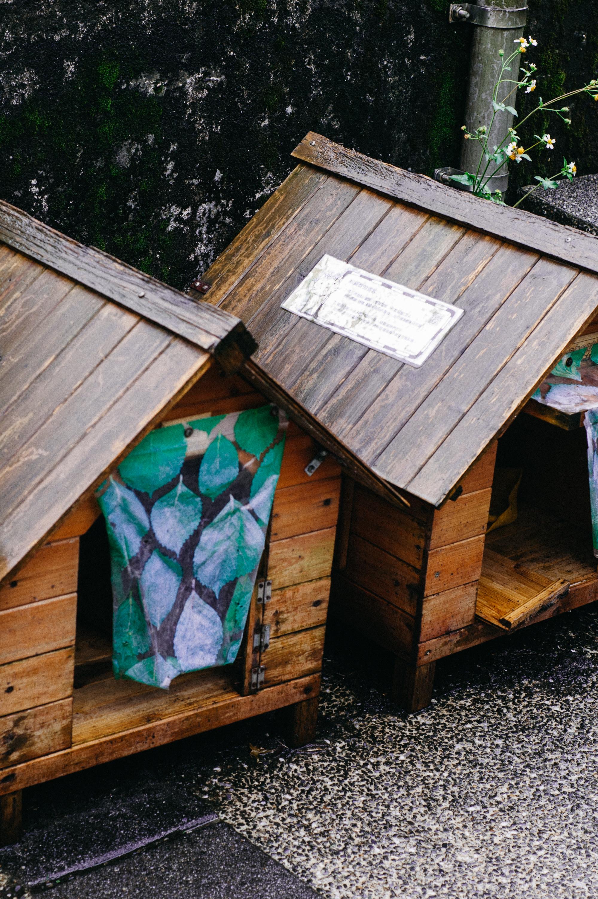 Petit cat houses.