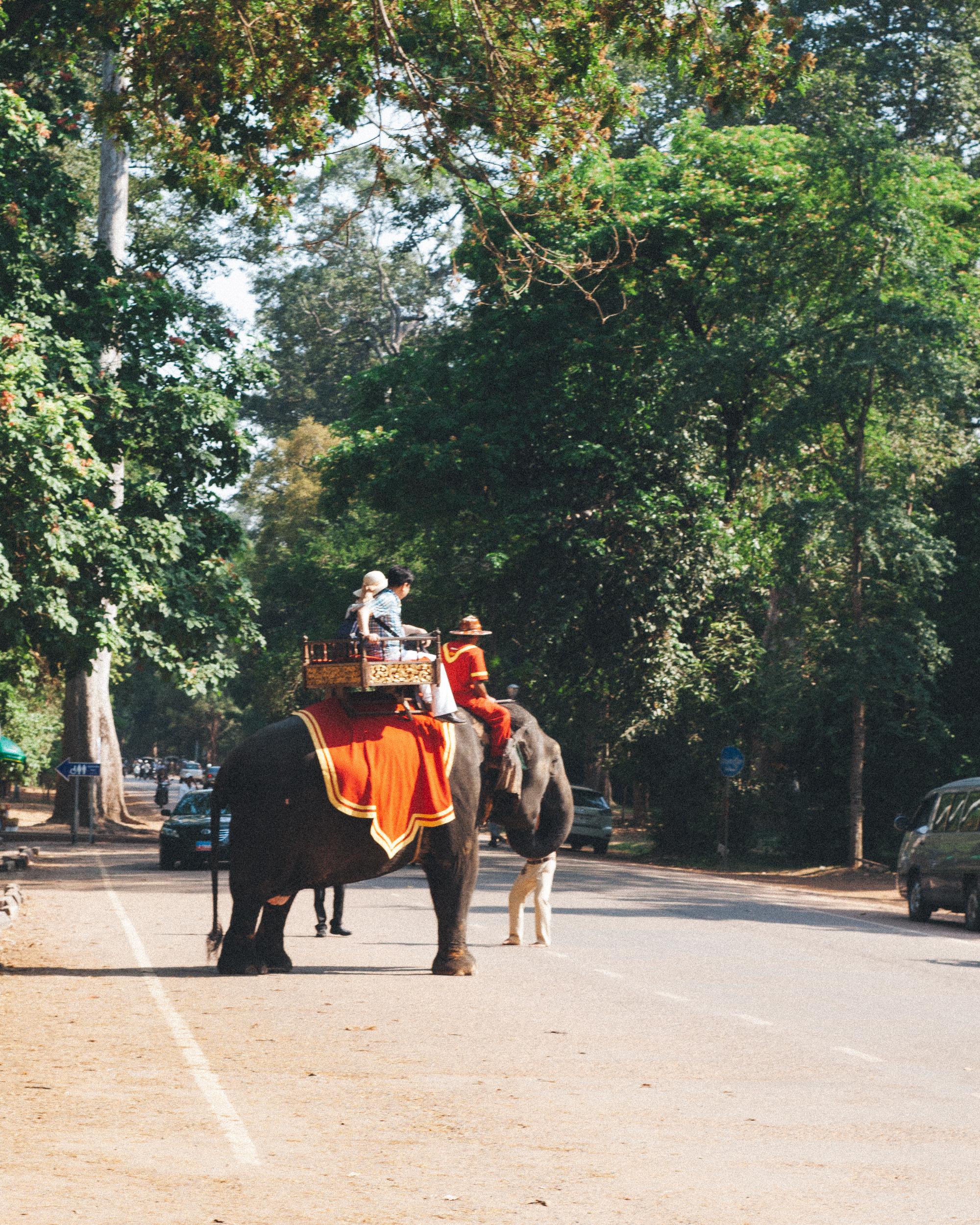 angkor wat temples siem reap (2 of 42).jpg