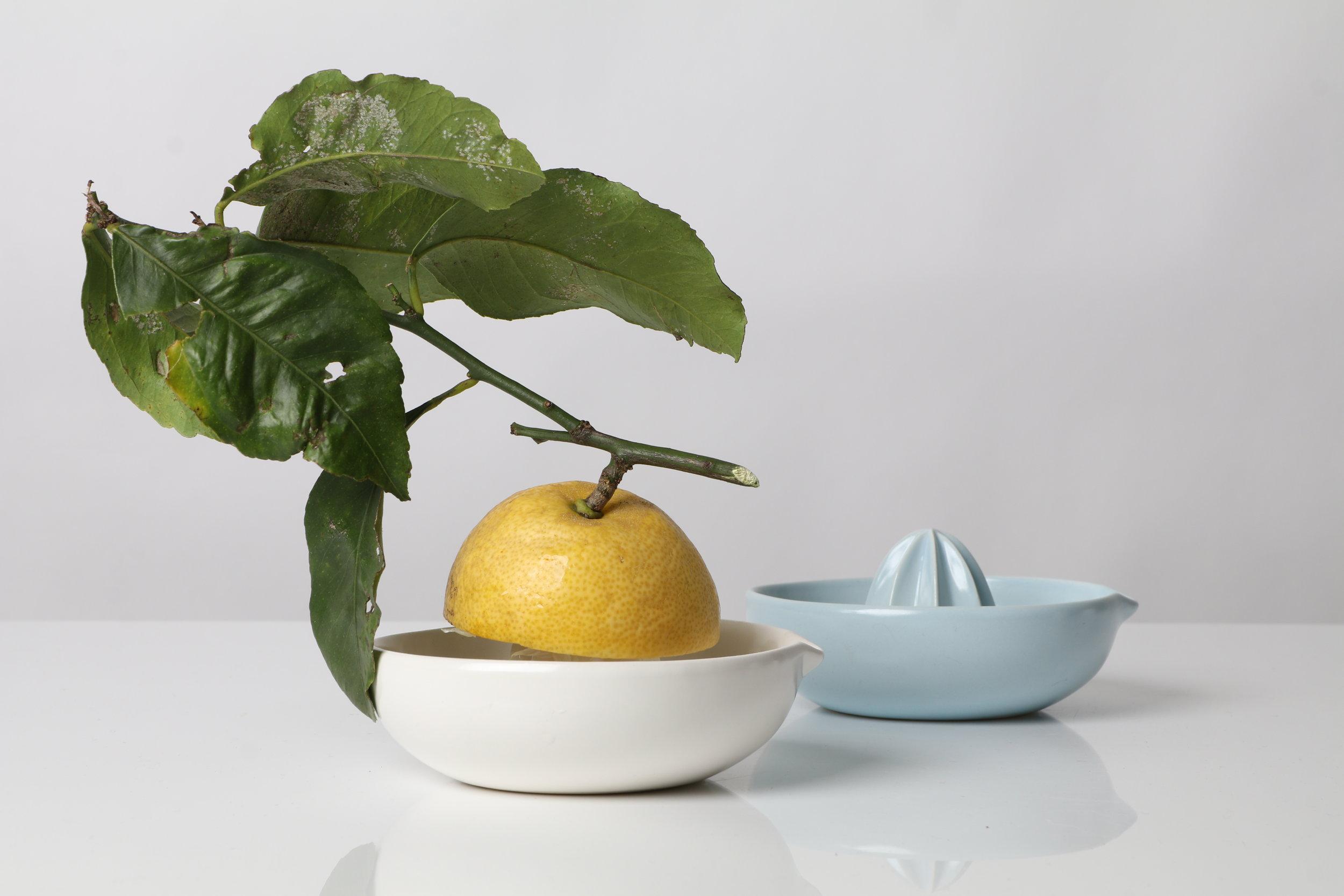 An elegant ceramic lemon squeezer by Gidon Bing