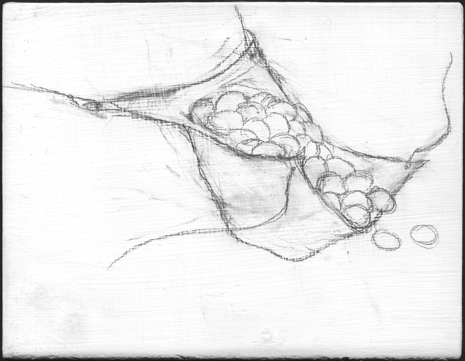 Apron Strings   , 2008,   graphite on gessoed panel, 3 3/4 x 4 3/4 in.