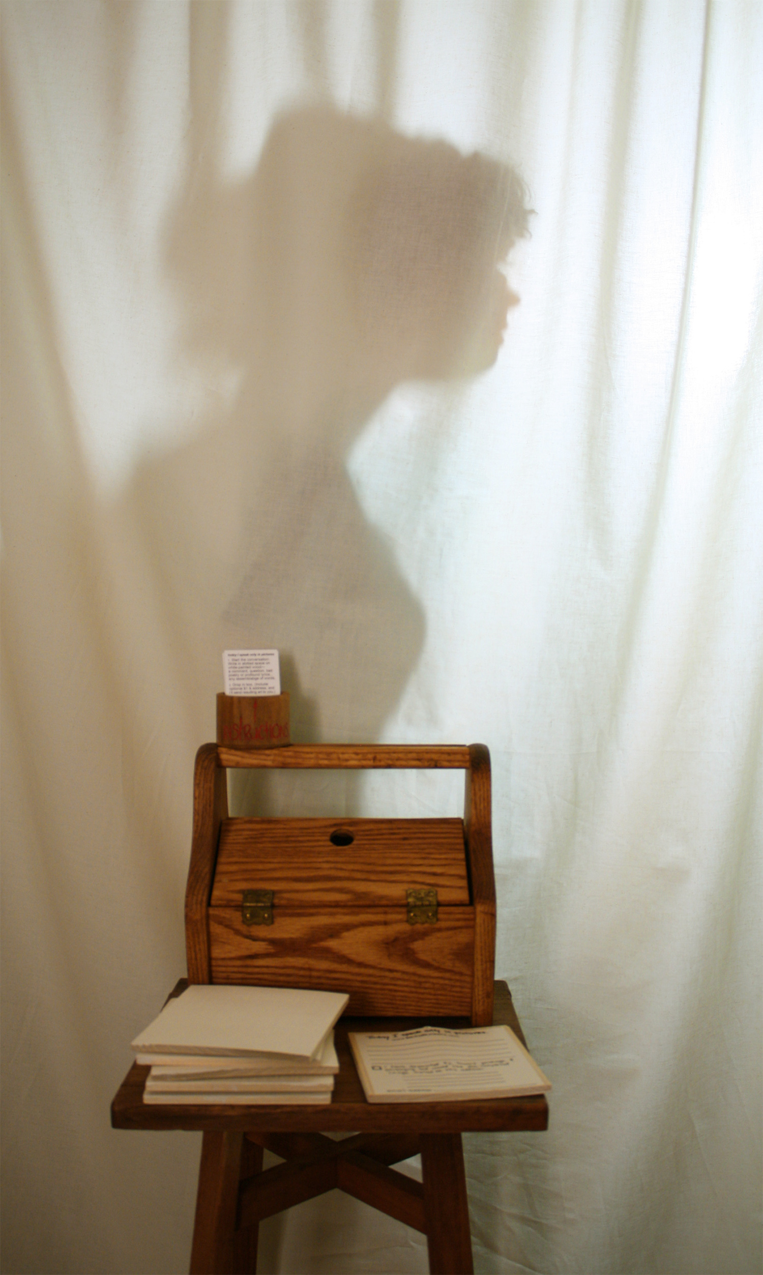 Today speak only in pictures , 2013, artist's shadow on workspace curtain
