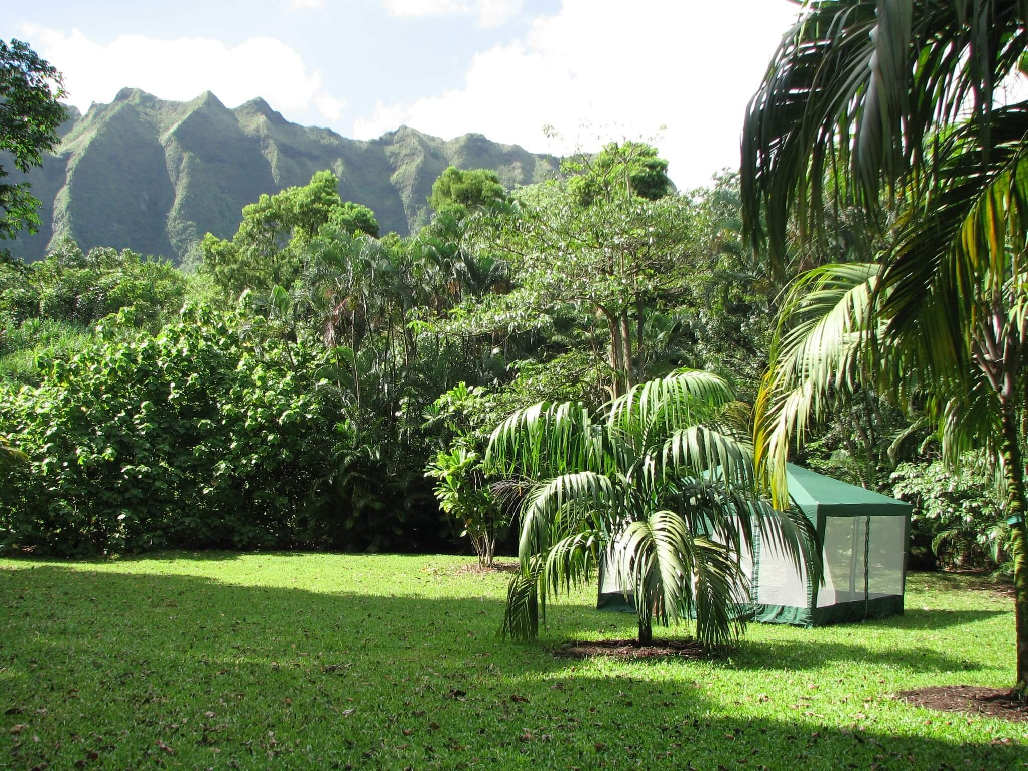 We will be holding class in a botanical garden inside a screened in tent with beautiful views.