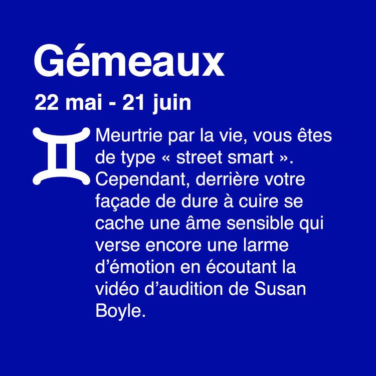 03 gémeaux.jpg