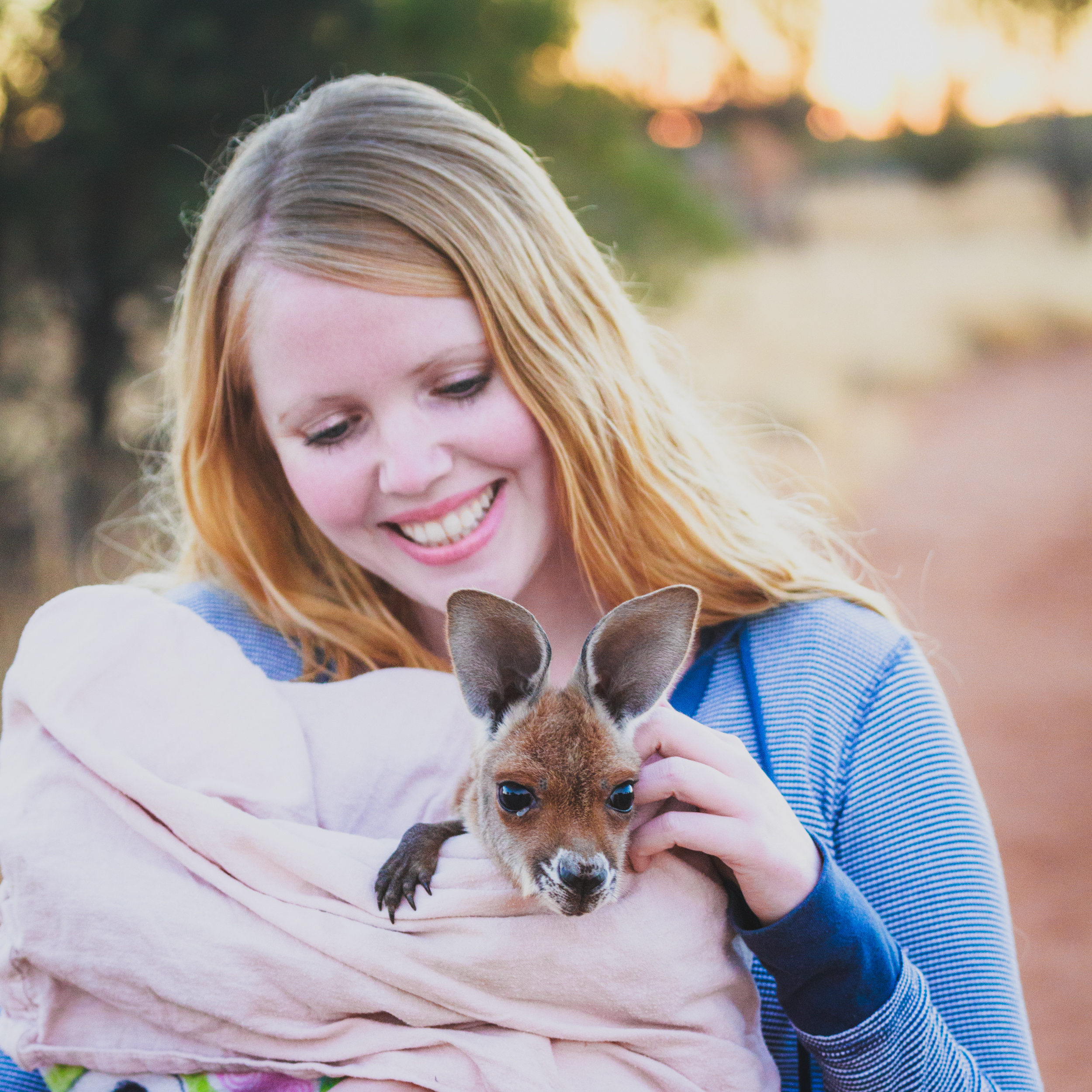 It was love at first sight, The Kangaroo Sanctuary in Alice Springs.