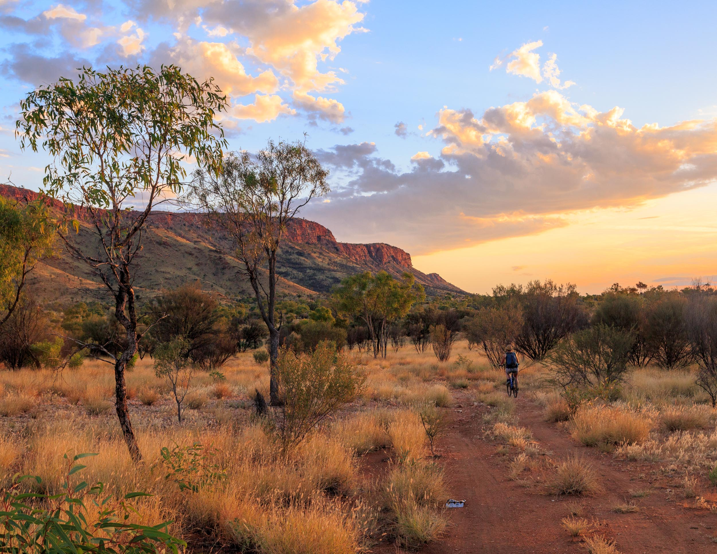 Things to do in Alice Springs: Cycle to Simpson's Gap