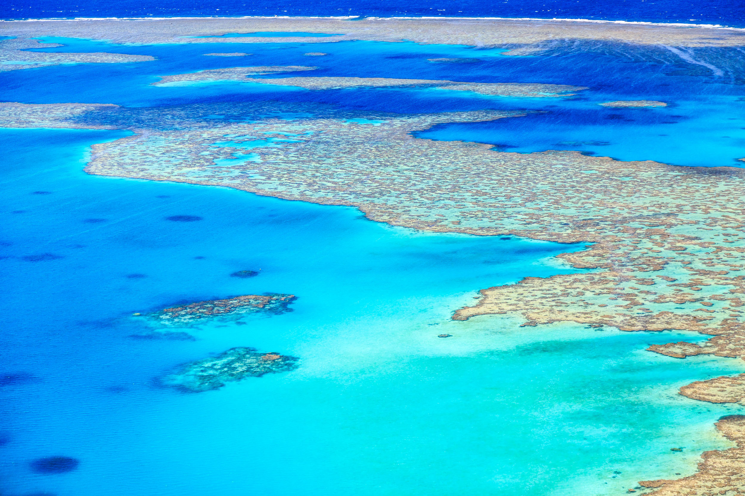 You have to see it to believe it, the beautiful Great Barrier Reef.