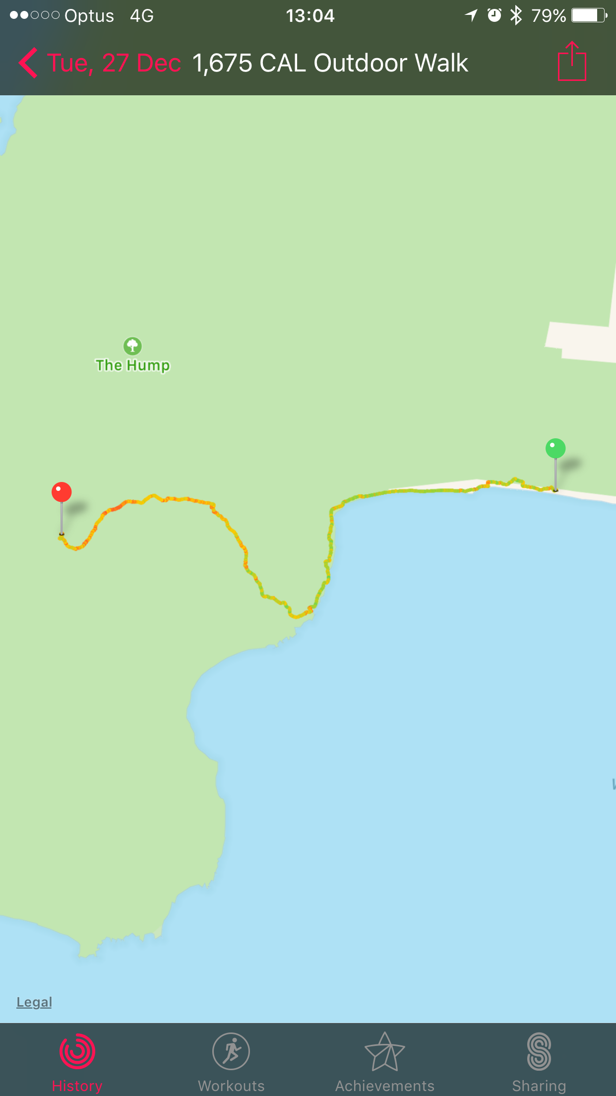 Day 1, Hump Ridge Track