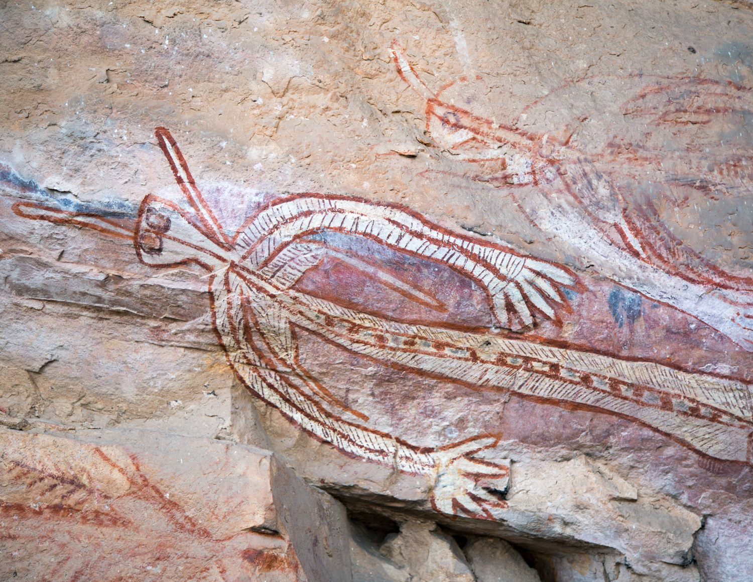 The best things to do in Kakadu: Nourlangie