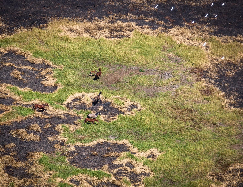 Scenic Flight Kakadu