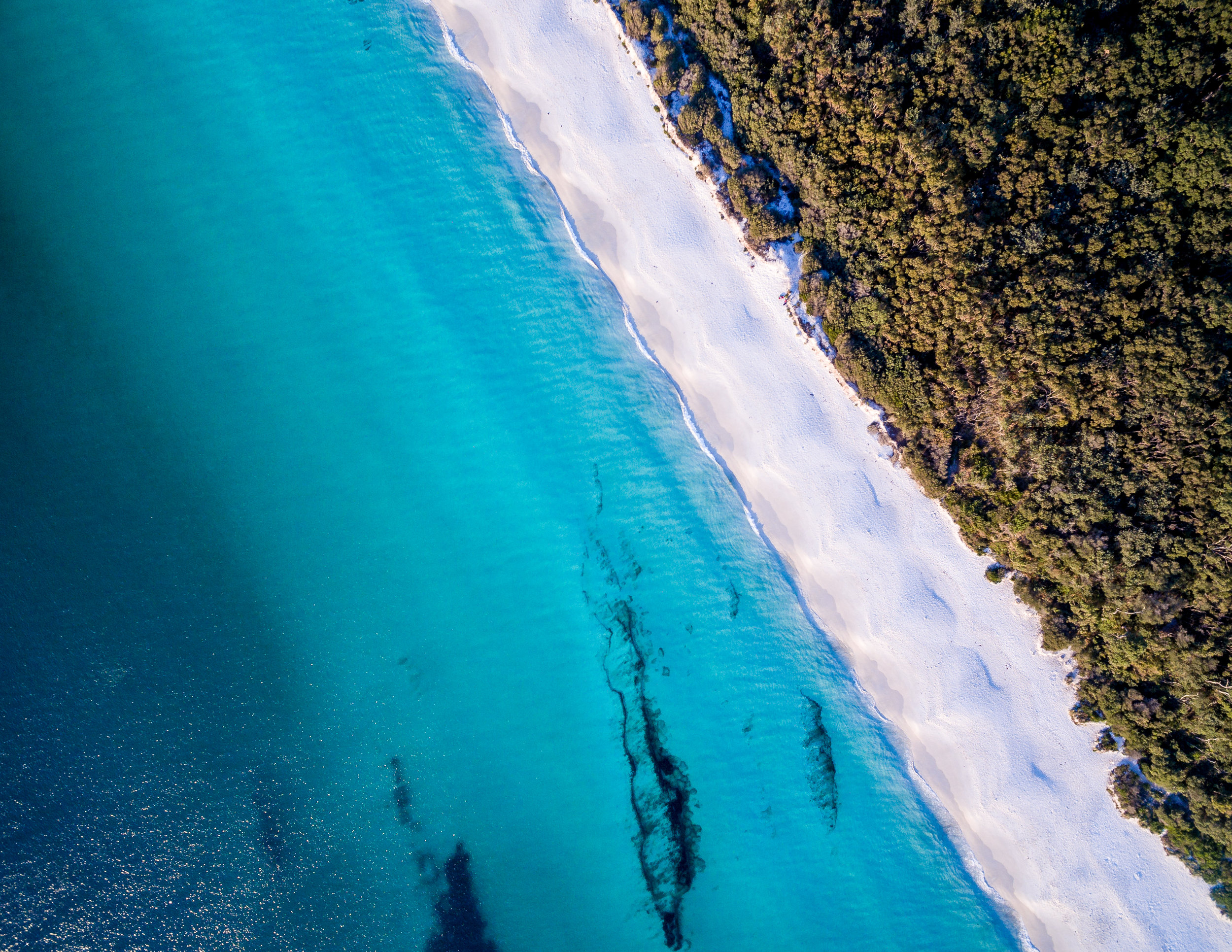 When is the best time to visit Australia: Hyams Beach, NSW