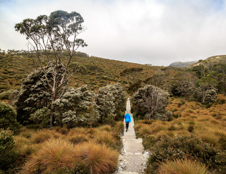 The best things to do in Tasmania: Cradle Mountain, Tasmania