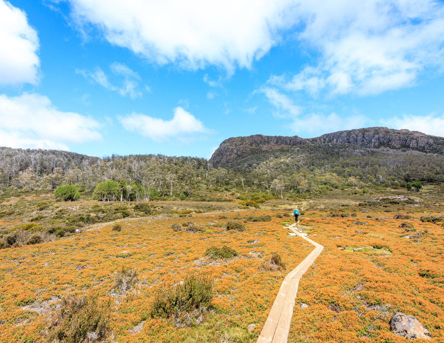 The best things to do in Tasmania: Walls of Jerusalem National Park, Tasmania