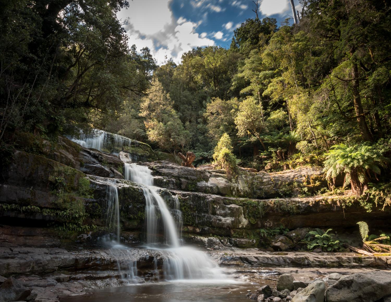 Best things to do in Tasmania: Liffey Falls, Tasmania