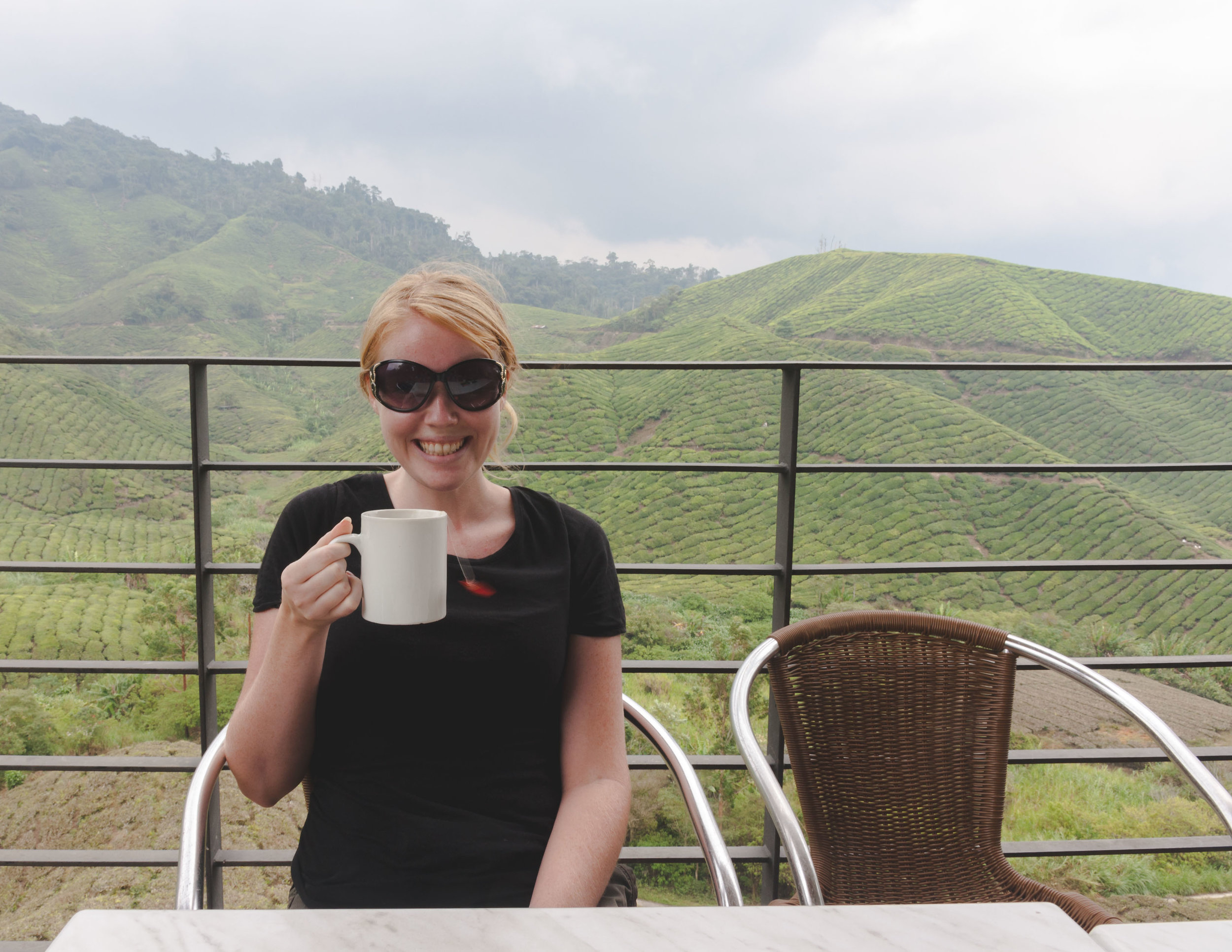 Best things to do in Malaysia: Boh Tea