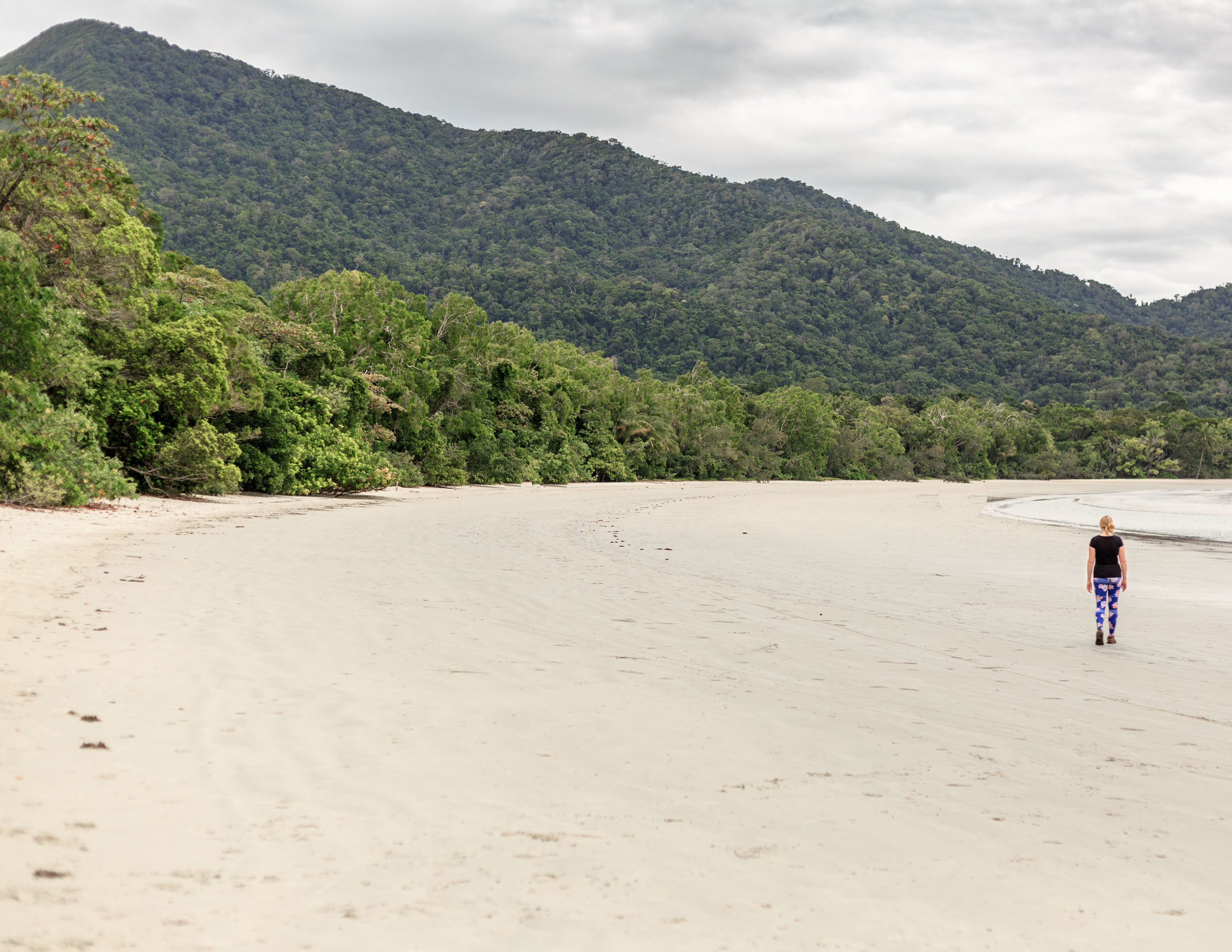 "Must-see places in Australia"" Cape Tribulation"